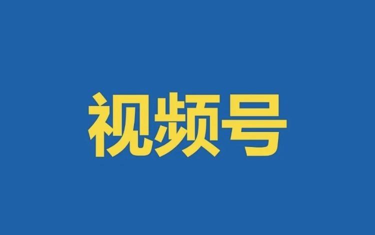 """021年Q1微信视频号生态趋势调查报告"""""""